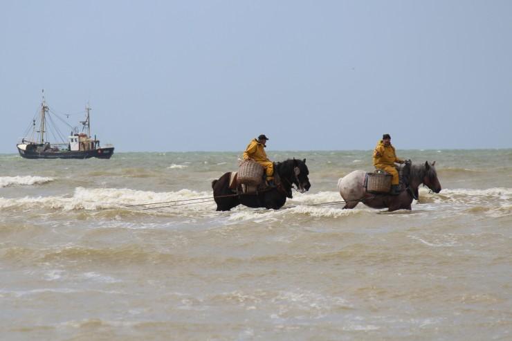 Paardenvissers uit Oostduinkerke