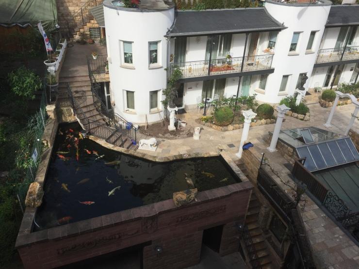 Zur Weinsteige Hotel Koi Pond