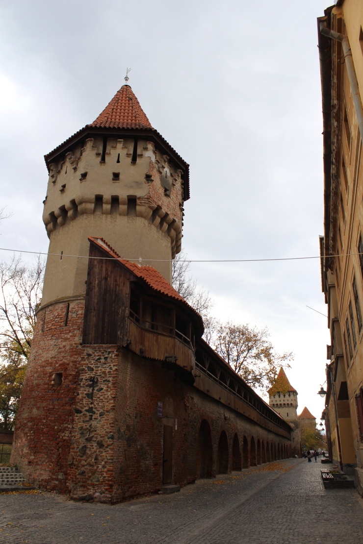 Sibiu Towers and Walls.