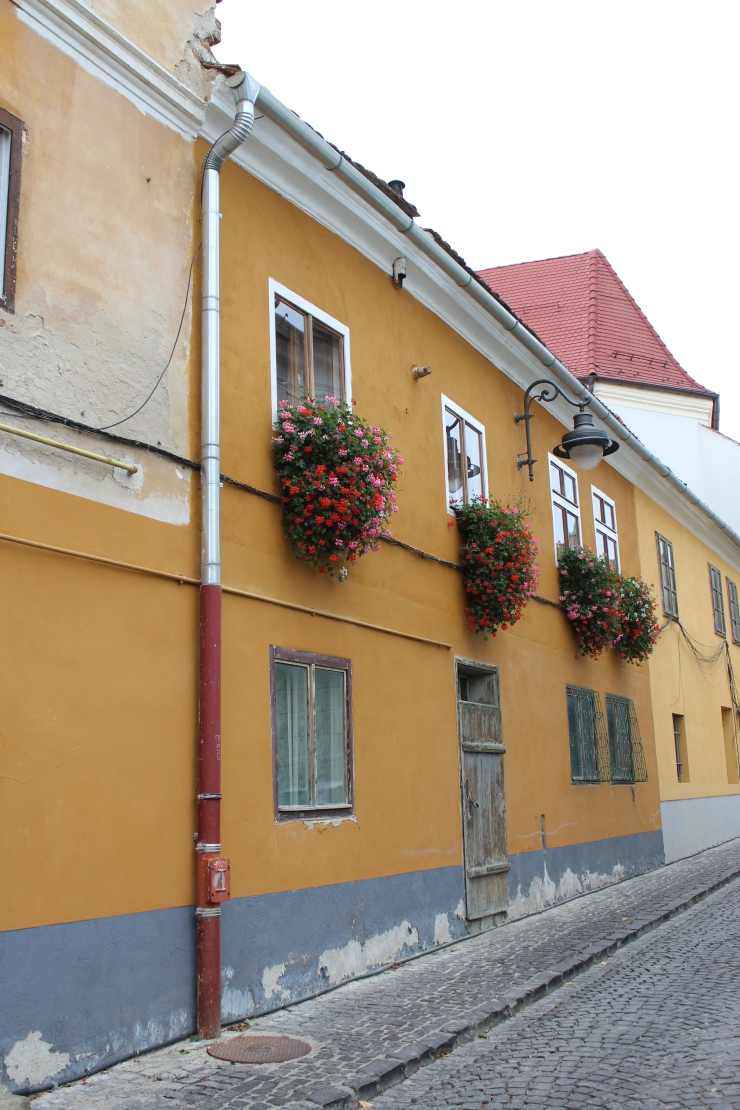 Sibiu Yellow House