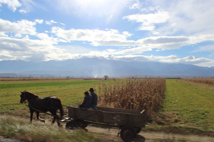 Romanian horse cart